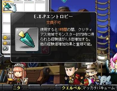 Maple13618a.jpg