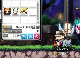Maple13654a.jpg