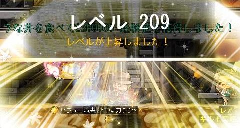 Maple13660a.jpg