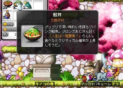 Maple13729a.jpg