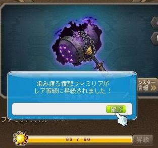 Maple13732a.jpg