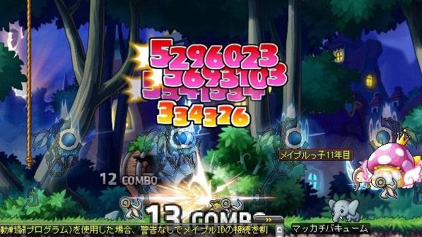 Maple13797a.jpg