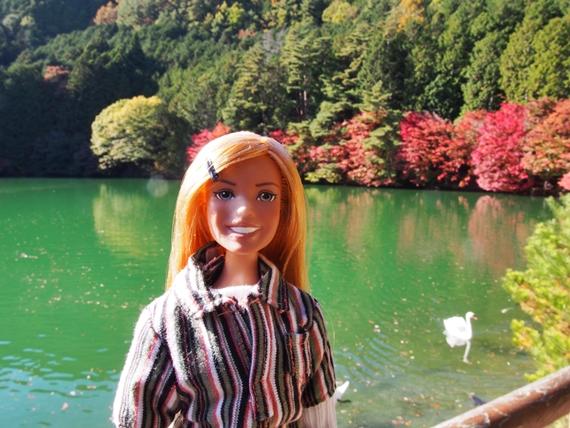 inagako-20151103-06s.jpg