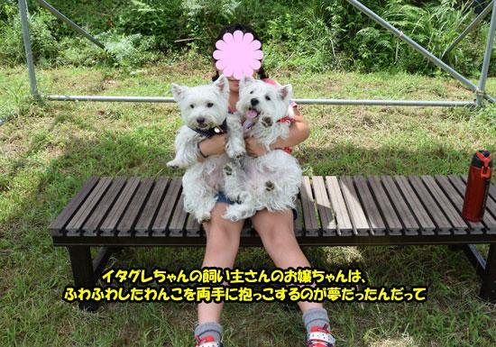 DSC_0131_2015090521153613d.jpg