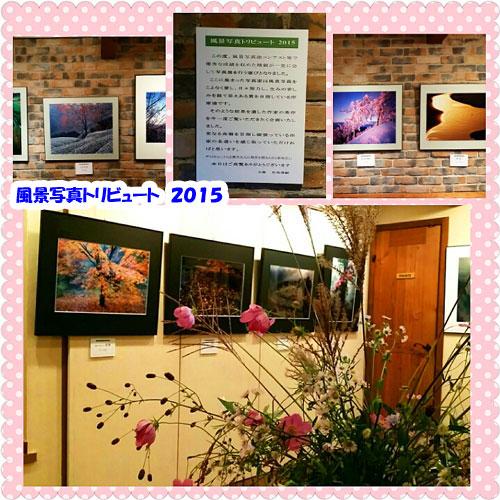 PhotoGrid_1443880887652.jpg