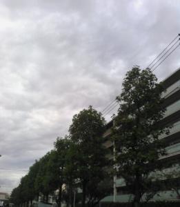 20151002朝