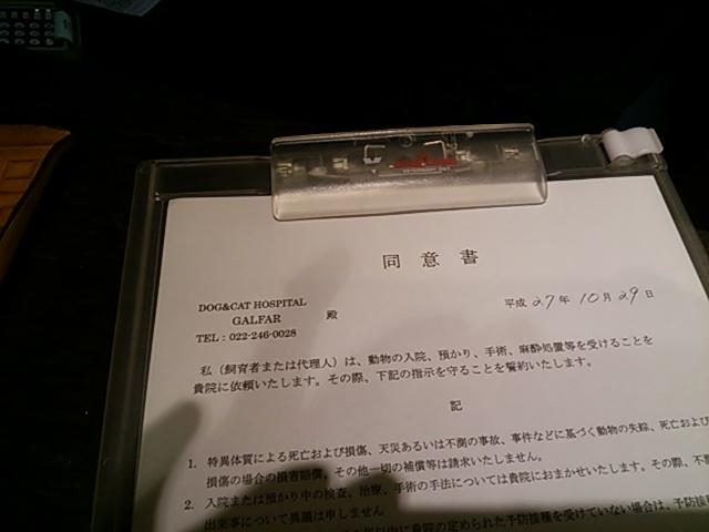 DSC_1041 (2)