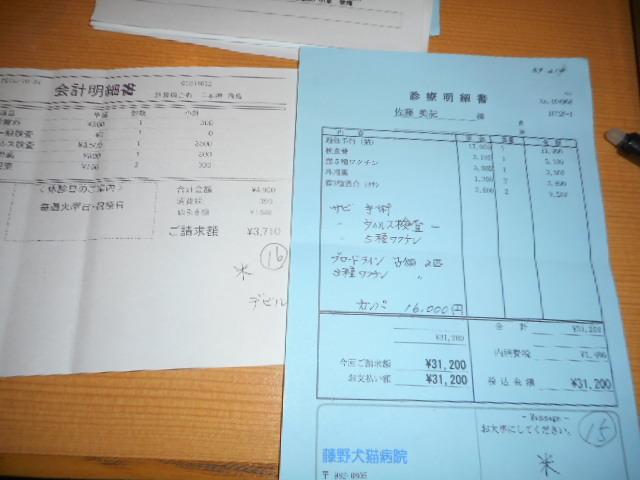 DSCN0110.jpg