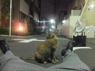 asagaya-street331.jpg