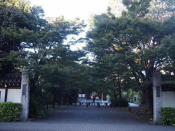 koenji-street247.jpg