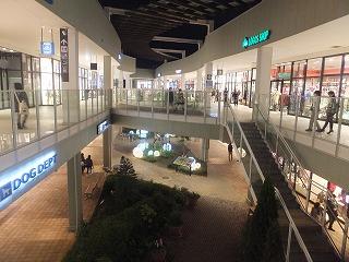 koshigaya7.jpg