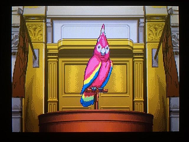 逆転裁判 北米版 オウム入廷22