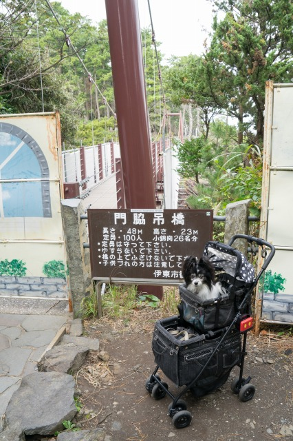 マリィとオッサンの伊豆二人旅(4日目)-011