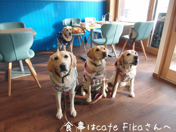 cafe_20151204172659fb9.jpg