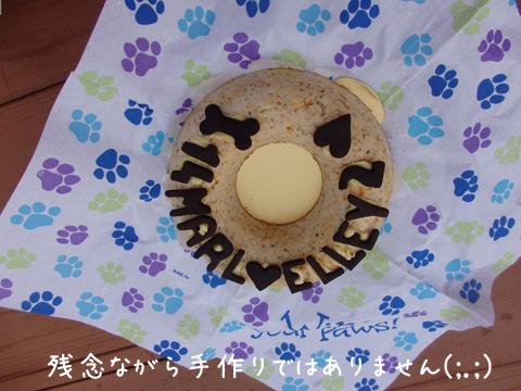 cake_20150920071122dc6.jpg