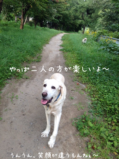 marusanpo1_20150918222702729.jpg