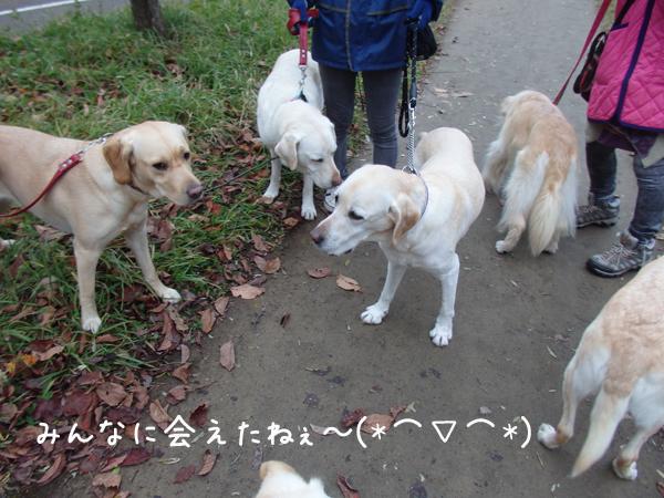 yuusan_2015103021123525f.jpg
