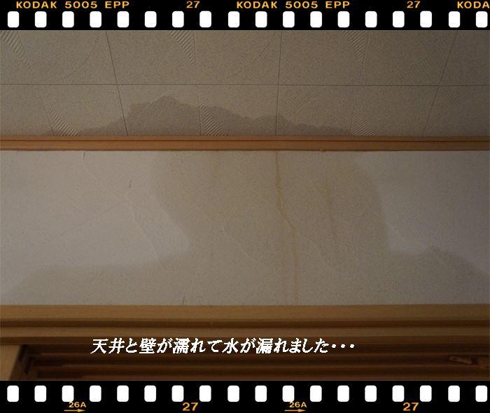 天井壁が濡れた