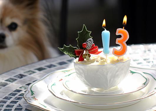 ケーキ近影