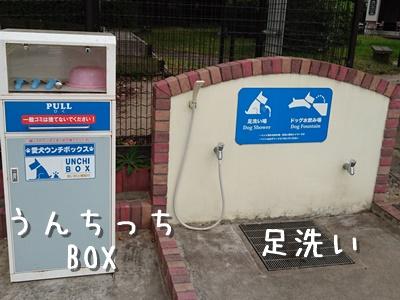 2_201510121918088b2.jpg