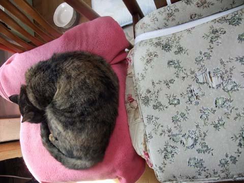 私の椅子②