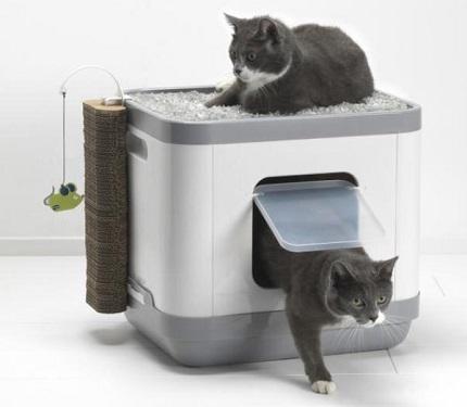 猫トイレ キャットコンセプト