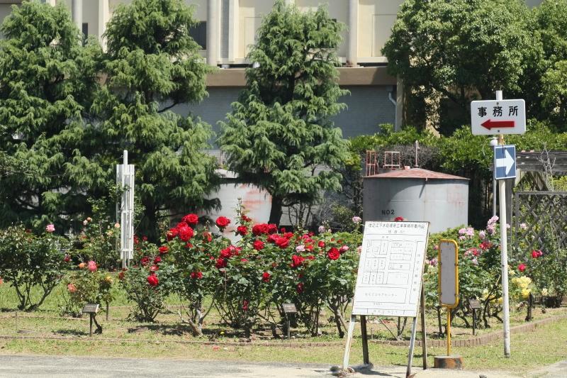 Suminoe Sewage Treatment(Rose Garden)