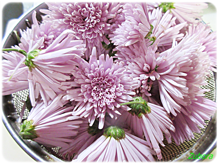 菊花のてんぶら