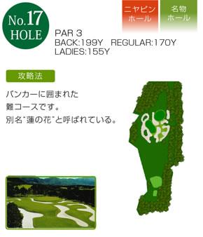 course17.jpg
