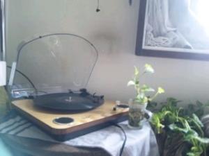 IONのレコードプレーヤー