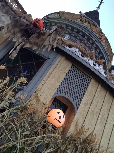 Halloween17_20151103210734a70.jpg