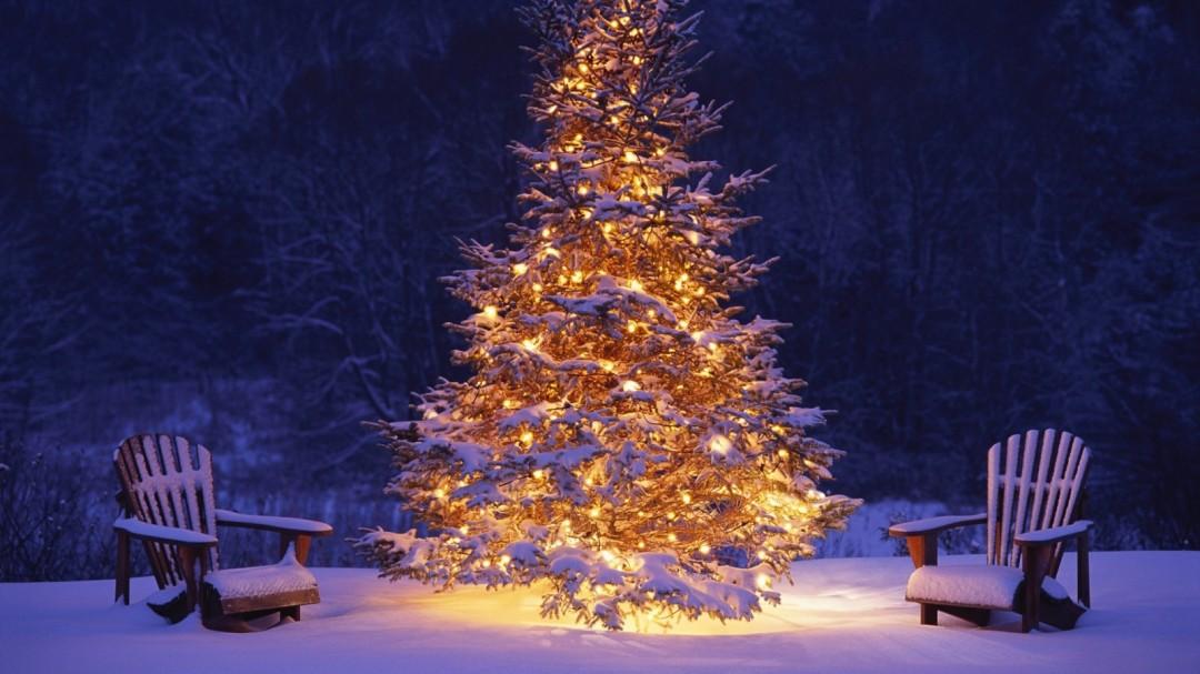 christmas19.jpg