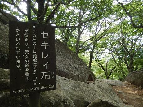 DSCN9460.jpg