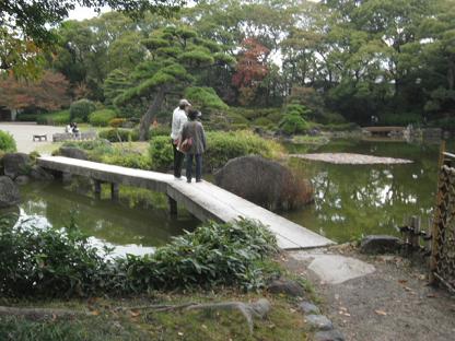 7 落ち着いた池には大きな鯉がいます