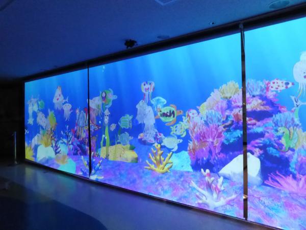新江ノ島水族館11