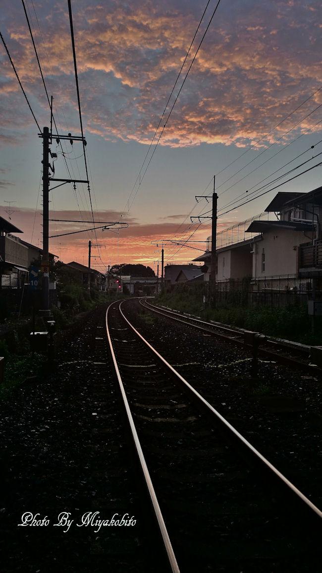 DSC_0467 - コピー - コピー