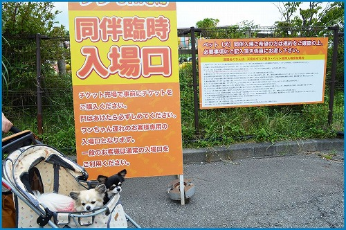 20150920前編 (4)