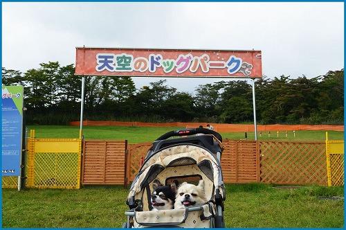 20150920前編 (5)