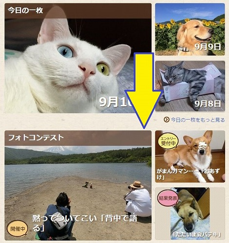 hisa-miya.jpg