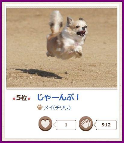 jump2015(2).jpg