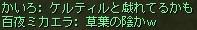3_20151207212432286.jpg
