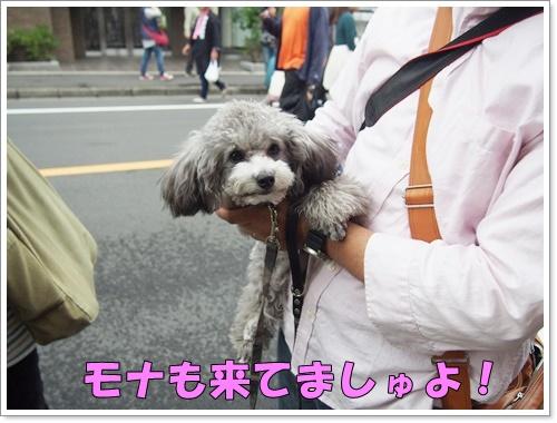 20151011_173.jpg