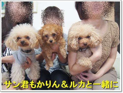 20151018_106.jpg