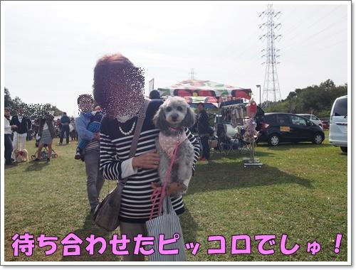 20151101_339.jpg