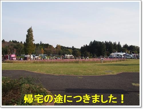 20151101_402.jpg