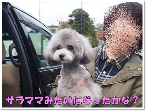 20151112_105.jpg