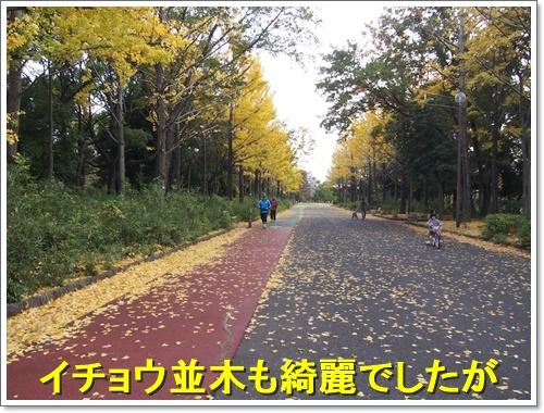 20151121_107.jpg
