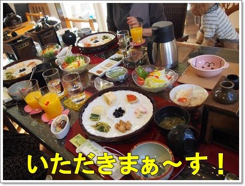 20151129_241.jpg