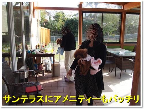 20151129_268.jpg