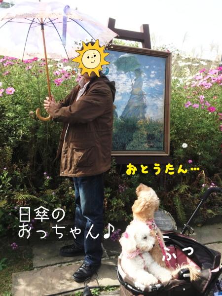 日傘のおっちゃん